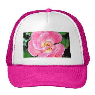 Color de rosa rosado enorme de la belleza singular gorro