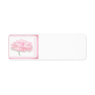 Color de rosa rosado etiqueta de remite