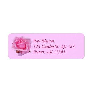 Color de rosa rosado etiquetas de remite
