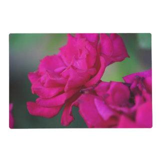 Color de rosa rosado florecida tapete individual