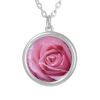 Color de rosa rosado hermoso collar plateado