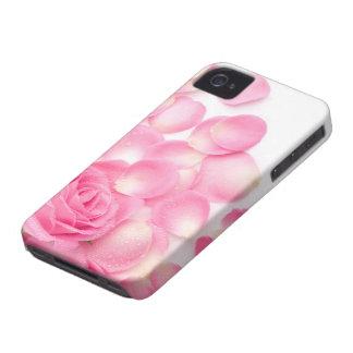 Color de rosa rosado hermoso con los pétalos iPhone 4 fundas