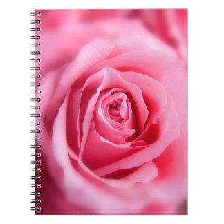 Color de rosa rosado hermoso cuadernos