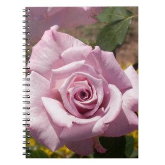 Color de rosa rosado hermoso libreta