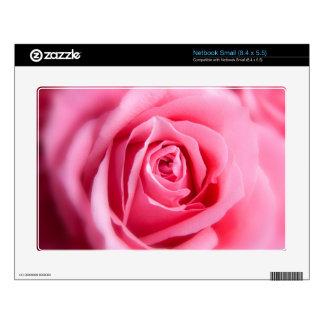 Color de rosa rosado hermoso skins para netbooks