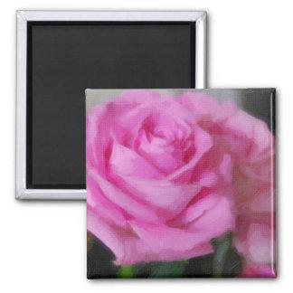 Color de rosa rosado imanes de nevera