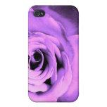 Color de rosa rosado iPhone 4/4S carcasas