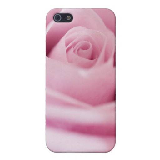 Color de rosa rosado iPhone 5 protectores