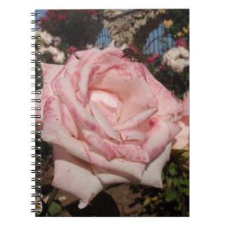 Color de rosa rosado libro de apuntes