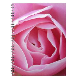 Color de rosa rosado libro de apuntes con espiral