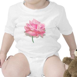 Color de rosa rosado lindo en la plena floración - trajes de bebé