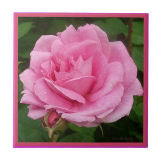 Color de rosa rosado magnífico azulejo cuadrado pequeño