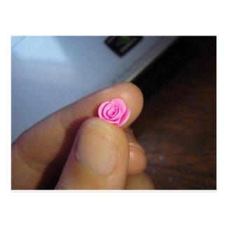 Color de rosa rosado minúsculo tarjeta postal