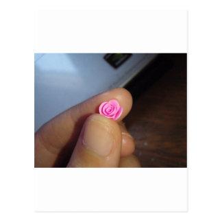 Color de rosa rosado minúsculo tarjetas postales