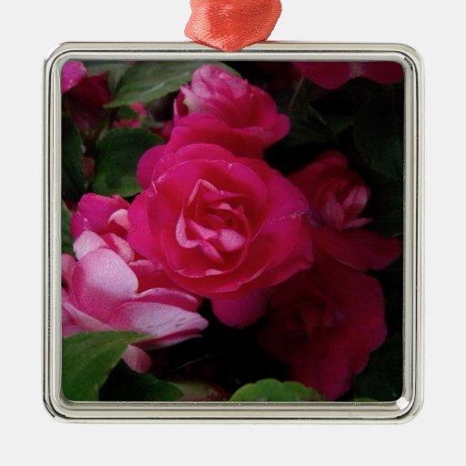 Color de rosa rosado ornamentos para reyes magos