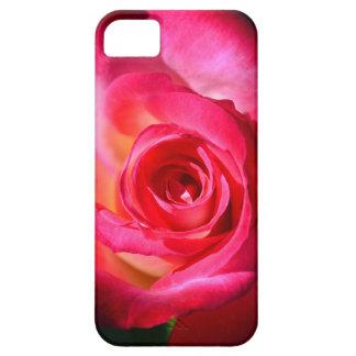 Color de rosa rosado oscuro funda para iPhone 5 barely there