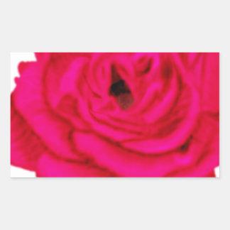 Color de rosa rosado rectangular pegatinas