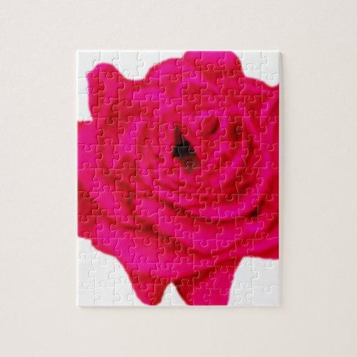 Color de rosa rosado rompecabeza con fotos