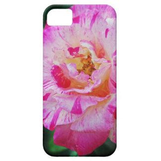 Color de rosa rosado rayado del caramelo iPhone 5 Case-Mate cárcasa