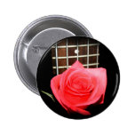 Color de rosa rosado rojo contra fretboard del baj pins