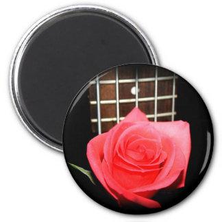 Color de rosa rosado rojo contra tablero del trast iman para frigorífico