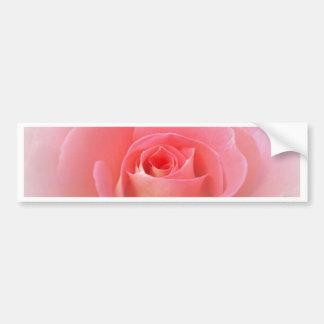 Color de rosa rosado romántico pegatina para auto