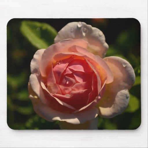 Color de rosa rosado romántico con el cojín de rat alfombrillas de ratón