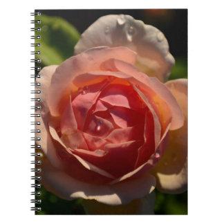 Color de rosa rosado romántico con el cuaderno de