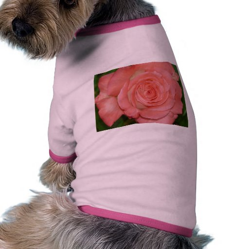 color de rosa rosado romántico camiseta con mangas para perro