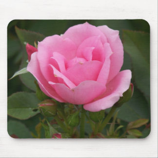 Color de rosa rosado alfombrilla de ratones