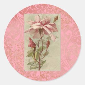 Color de rosa rosado viejo y brotes de Klein Pegatina Redonda