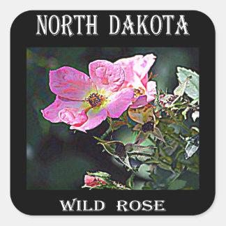 Color de rosa salvaje de Dakota del Norte Pegatina Cuadrada