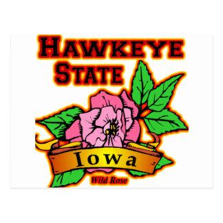 Color de rosa salvaje del estado de Iowa Hawkeye Tarjetas Postales