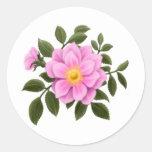 Color de rosa salvaje elegante etiqueta redonda
