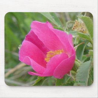 Color de rosa salvaje F0007 Mouse Pads