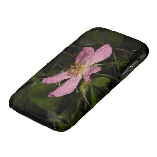 Color de rosa salvaje iPhone 3 protector
