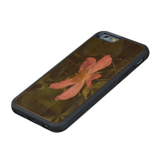 Color de rosa salvaje funda de iPhone 6 bumper cerezo