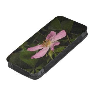Color de rosa salvaje funda acolchada para iPhone