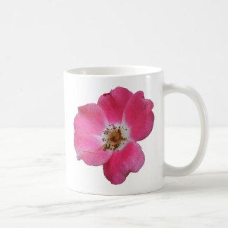 color de rosa salvaje rosado taza básica blanca