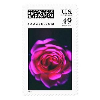 color de rosa sello postal