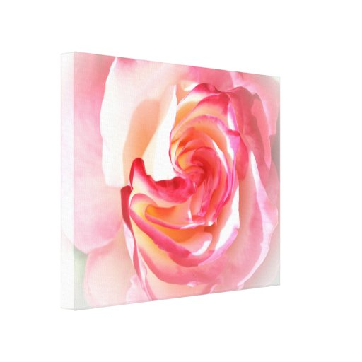 Color de rosa soñador rosado suave impresiones en lienzo estiradas