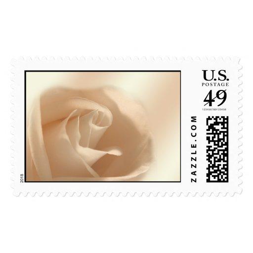 Color de rosa suave timbres postales
