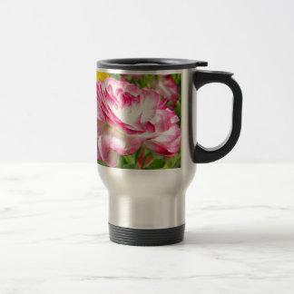 Color de rosa tazas de café
