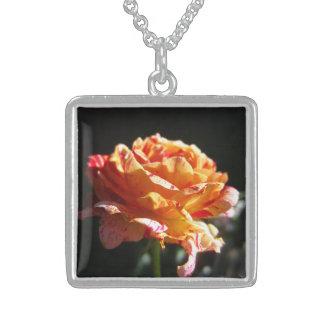 Color de rosa tricolor hermoso, Ster. Sq de plata. Colgante Cuadrado
