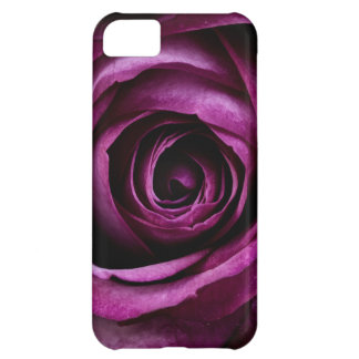 Color de rosa violeta hermoso funda para iPhone 5C