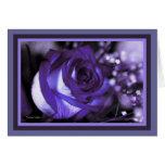 ¡color de rosa violeta imponente! Tarjeta en blanc