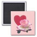 Color de rosa y corazón iman para frigorífico