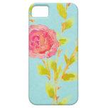 Color de rosa y trullo iPhone 5 coberturas