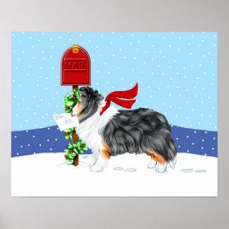 Color del correo del navidad de Sheltie tri Poster