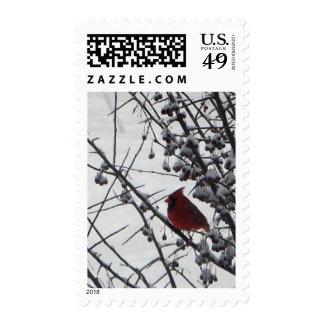 Color del invierno sello